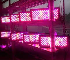 Advanced Platinum Led Grow Light P300 P450 P600 P900 P1200 730nm