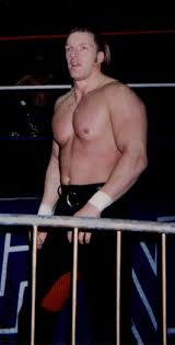 Wwe Curtain Call 1996 by The Kliq Wrestling Tv Tropes