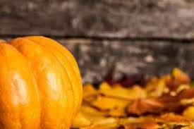 Sarasota Pumpkin Festival Location by Fall Events In Venice North Port And Englewood Visit Sarasota