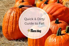 Best Pumpkin Patches Near Milwaukee by The Ultimate Guide To Fall And Halloween In Milwaukee