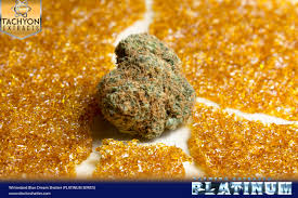 New Product* Tachyon Extracts - Blue Dream (PLATINUM) / Sale ... Dream Big Tote Bag Coupondunia Coupons Cashback Offers And Promo Code How To Generate Coupon On Amazon Seller Central Great Organic Cbd Oil Products Home Lucid 15 Off Drip Hair Coupons Promo Discount Codes Social Media Day Exclusive Cianmade Rbee Is Every Coupon Collectors Dream Verified Get Your Ride Nov2019 Dealhack Codes Clearance Discounts To Redeem Shop Rv World Nz Koovs Code 70 Extra 20 Sunday Riley Subscription Box