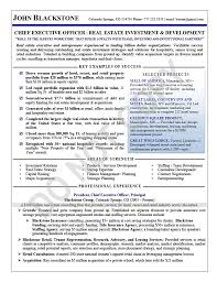 Page 1 CEO Resume Sample Real Estate Executive