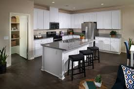 Estate By Rsi Cabinets by Welcome To Augusta New Homes In California