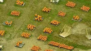 Portland Tn Pumpkin Patch by Fall Fun Pumpkin Patch Corn Maze Locations Newschannel 5 Nashville