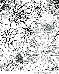 Coloring Pages Flowers Printable Free Flower Pictures Print May Flow