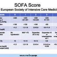 Sofa Score Calculator Excel by Sofa Score Icu 10 Sofa Score Calculator Icu Early Detection Mods