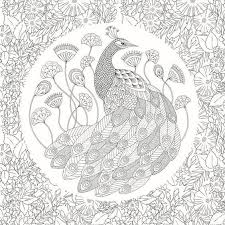 Adult Coloring Pages Books Colouring Book Animal Kingdom Peacocks Needlework