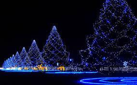 Bethlehem Lights Christmas Trees With Instant Power by Christmas Abidan Paul Shah