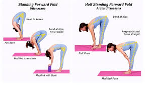 Todays Pose Is Uttanasana Standing Forward Fold A Simple