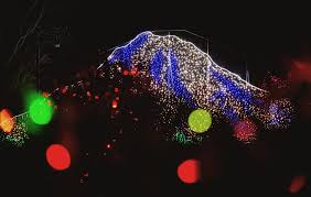 Bellevue Singing Christmas Tree by Holiday Review Zoolights At Point Defiance Zoo U0026 Aquarium Parentmap