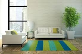 light green rugs for living room green living room rugs