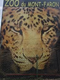 photo2 jpg picture of zoo fauverie du faron toulon tripadvisor
