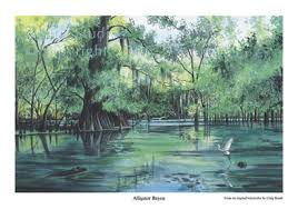 alligator bayou lake update louisiana craig routh artist illustrator alligator bayou
