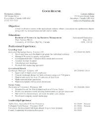 Career Objective Resume Example Objectives Examples For Resumes Best Ideas On Job