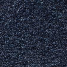 Navy Blue Carpet Interior