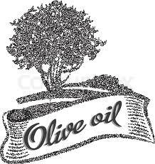 Olive tree vector illustration Olive oil Vector olive tree for labels Hand drawn olive tree vector illustration Stock Vector