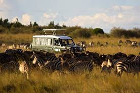 100 Safari Truck Why You Should Pay More For An African Safari International Traveller