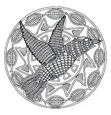 Mandala Color Animals Free Bird Printable Colouring Pages For Adults Advanced Coloring Full Size