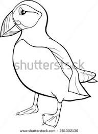 Puffin Coloring Pages Page Kids