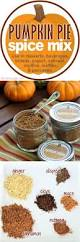 Bigs Pumpkin Seeds Amazon by Pumpkin Pie Spice Mix For Cooking And Gifts
