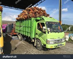 Riau Indonesia May 29 2016 Truck Stock Photo (Download Now ... Cstruction Career Days The Golden Years Hawaii I M Nisei And Sansei Pdf Isnt The Only Sexually Transmitted Hawaii Heavy Equipment Hauling Honolu Hi Akana Trucking Inc Fort Jay Stock Photos Images Page 3 Alamy Truck Supply Amp Equipment Vamph Trucks Oukasinfo Usa Jobs Resume Tips Usajobs Federal Resume Jobs Format Department Of Hawaiian Home Lands