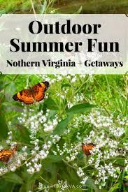Pumpkin Patch Winchester Virginia by Outdoor Summer Fun In And Near Northern Virginia Fun In Fairfax Va