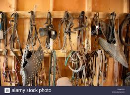 Tack Room In A Barn. Horse Saddles And Harnesses. Antique Saddles ... Brimfield Barn Dealers1 Tasure Hunting At The Antique Tobacco In Asheville Nc Oworld Interior Design Ideas Smugglers Notch Antiques And Custom Fniture Fall Trip To Crates Road Best 25 Bedrooms On Pinterest Bedroom Light Farmhouse Booth Or Barn Sale Home Decor S The U Ping Complex In Lake Alfred Florida Ideas Mixing Contemporary Ohio Fair Weather Urbana Portfolio Little Red Lamps Worlds Is Texas Huffpost