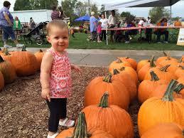 Ohio Pumpkin Festival by Annual Fall Farm Pumpkin Festival Young U0027s Jersey Dairy
