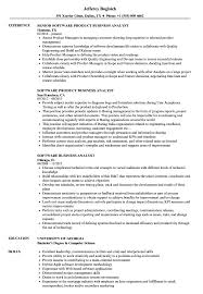 Software Business Analyst Resume Samples