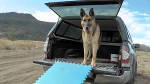 100 Dog Truck Ramp YouTube