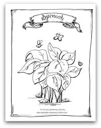Printable Spinach Coloring Page