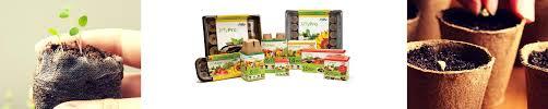 Organic Pumpkin Seeds Australia by Seeds Bulbs U0026 Garden Gifts Mr Fothergill U0027s