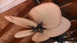 Palm Leaf Ceiling Fan Replacement Blades by Fanimation Islander Ceiling Fan Model Fp320ab1 With 5 Palm Leaf