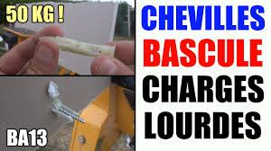 cheville a bascule charges lourdes placo ba13 ba16 ba10 plaque