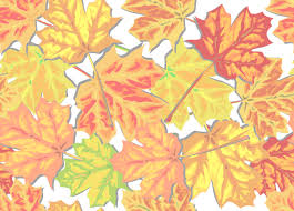 Fall leaves frame with