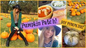 Meadowbrook Pumpkin Farm by Pumpkin Patch U0026 Diy Pumpkin Decorating Madison Martine Youtube