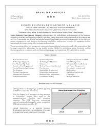 Business Development Resume Example 3 Examples