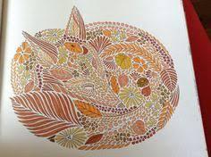 My Beautiful Rainbow Fox Milliemarotta Adultcolouringbook