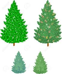 Christmas Trees Types by Various Types Of Christmas Trees With Cones In 3d Royalty Free