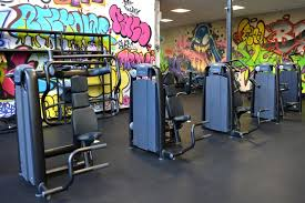salle de sport salle de sport roanne musculation et fitness gigagym fr