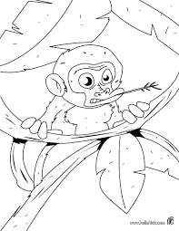 Baby Monkey In The Tree Coloring Page