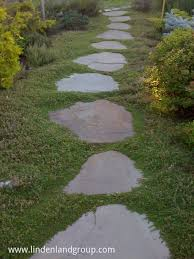 Bluestone Flagging Stepping Stone Path With Thymus Minus ... Garden With Tropical Plants And Stepping Stones Good Time To How Lay Howtos Diy Bystep Itructions For Making Modern Front Yard Designs Ideas Best Design On Pinterest Backyard Japanese Garden Narrow Yard Part 1 Of 4 Outdoor For Gallery Bedrock Landscape Llc Creative Landscaping Idea Small Stone Affordable Path Family Hdyman Walkways Pavers Backyard Stepping Stone Lkway Path Make Your