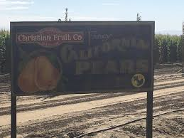 Del Oso Pumpkin Patch Lathrop Ca by Dell U0027osso Family Farms Lathrop Ca Top Tips Before You Go With