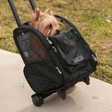 snoozer roll around pet carrier pet stroller blog