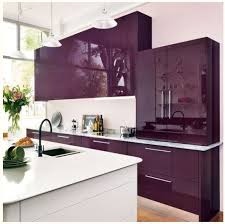 Purple Kitchen Cabinets The Influence of Purple