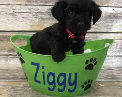 personalized dog toy etsy