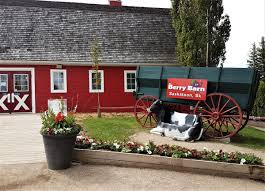 The Berry Barn On Twitter:
