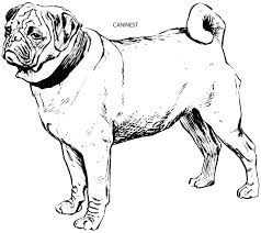 Dog Printable Coloring Pages Pics Of Dogs House Page Pictures
