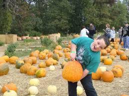 Pumpkin Picking Richmond by Where To Go Apple And Pumpkin Picking This Fall Season Silive Com