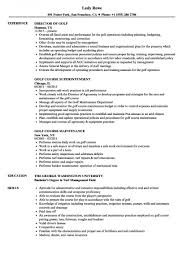 Free Download Sample Best College Golf Resume Template Contemporary Of Professional